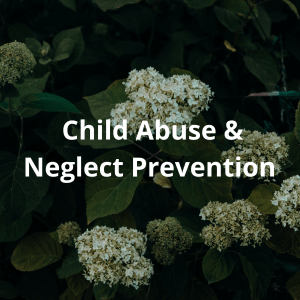 Child-Abuse-and-Child-Neglect